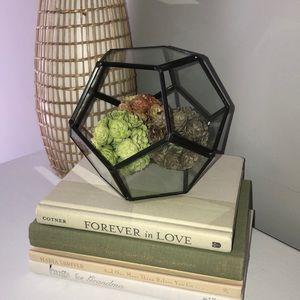 Glass Plant Holder Geometric Shape